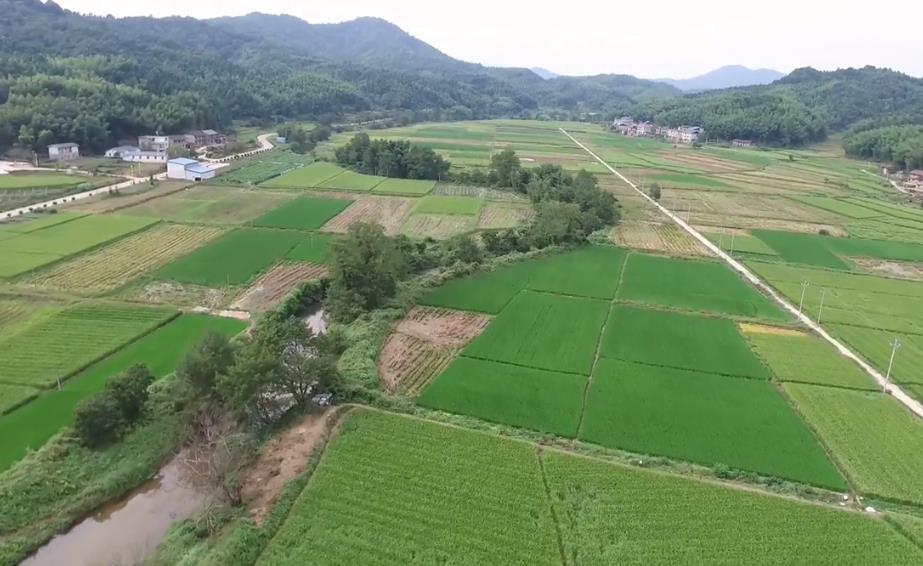 建宁县溪口镇桐元村风景,浓浓的乡村味道,城里的人好羡慕